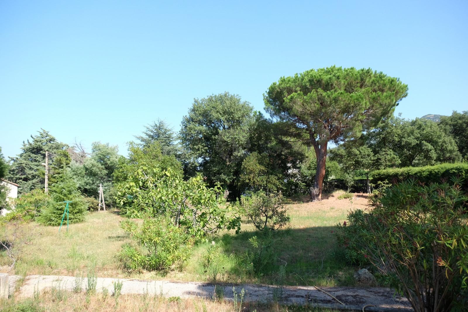 Vente terrain laroque des alberes avec terra albera for Vente terrain